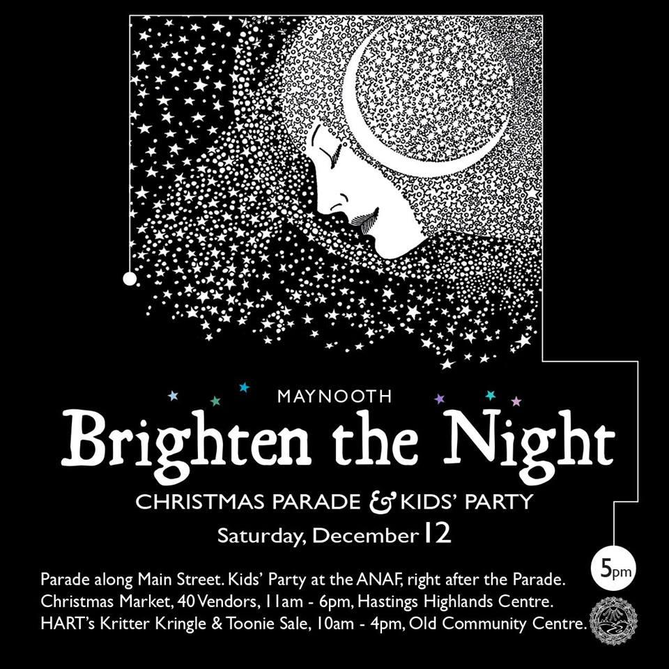 Brighten the Night Parade Maynooth 2015